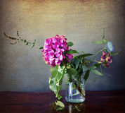 Hydrangea in glass vase with wild flowers Stock Photo