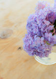 Hydrangea in a glass vase Stock Images