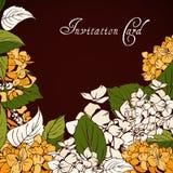 Hydrangea (Gortensia) invitation card. Hand drawn vector illustration Stock Photos
