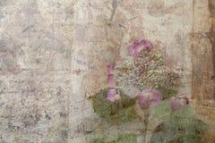 Hydrangea grunge Stock Image