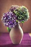 Hydrangea hortensiabloemen Stock Afbeelding