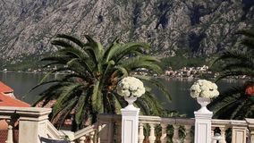 Hydrangea hortensiabloemen in een pot Huwelijksdecoratie in Montenegro stock video