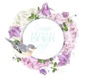 Hydrangea hortensiavogel om embleem Royalty-vrije Stock Foto