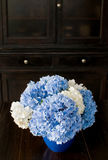 Hydrangea in the kitchen Stock Images