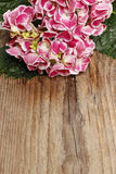 Hydrangea macrophylla (hortensia flower) on wooden table Royalty Free Stock Image