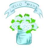Hydrangea nel POT Illustrazione di Stock