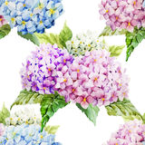 Hydrangea pattern Royalty Free Stock Photography