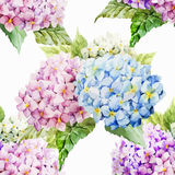 Hydrangea pattern Stock Images