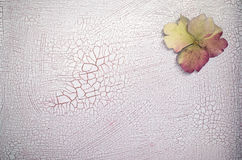 Hydrangea petals on a crackled paint surface Stock Photography