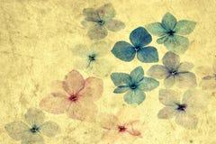 Hydrangea petals with texture overlay Stock Photography