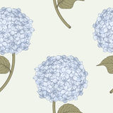 Hydrangea Seamless Pattern. Pen And Ink-style illustration of blue hydrangea Stock Images
