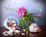 Hydrangea and shells Stock Photo