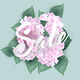 Hydrangea with Summer sale lettering Stock Photos