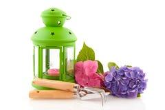 Hydrangea und Gartenarbeithilfsmittel mit grüner Laterne Stockfotografie