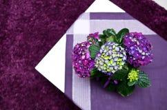Hydrangea on white table Royalty Free Stock Photo