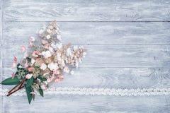 hydrangeas Fotografia de Stock Royalty Free