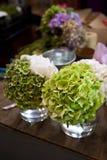 Hydrangeas Royalty Free Stock Photos