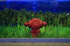 Hydrant Royalty Free Stock Photo