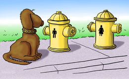 Hydrant. A dog looking at fire hydrants Royalty Free Stock Photography