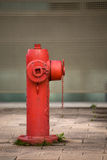 Hydrant. Device detaill with blur background Royalty Free Stock Photo