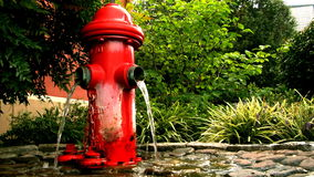 Hydrant 1 stock video footage