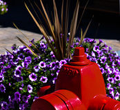 Hydrant in Bloemen Stock Fotografie