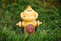 Hydrant im hohen Gras stockbilder
