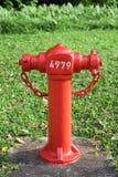 Hydrant mit Grashintergrund Stockfotos