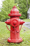 Hydrant. Red hydrant on a lawn against trees after rain Royalty Free Stock Image