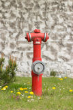 Hydrant with water Stock Images