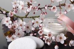 Hydrater la crème avec des fleurs Photos libres de droits