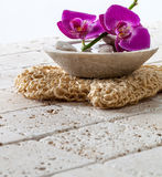 Hydration and hygiene concept with fresh pampering flowers for luxury Stock Images