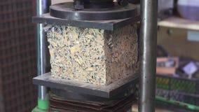 Hydrauliczna prasa bada siłę elementu arbolite zbiory wideo
