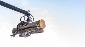 Hydraulische manipulator met logboeken, hemelachtergrond met ruimte, het registreren royalty-vrije stock foto's