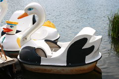 Hydro Bicycle Swan Model Stock Photography