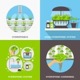 Hydrocultuur Vlak Concept stock illustratie