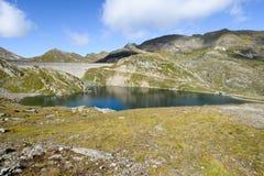 Hydroelektrisk fördämning av Naret på den Maggia dalen Fotografering för Bildbyråer