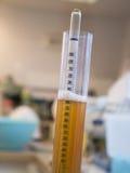 Hydrometer wordt gebruikt om het soortelijke gewicht van wijn en bier te meten dat Royalty-vrije Stock Foto