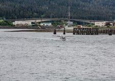 Hydroplanu narządzanie dla start Obraz Royalty Free