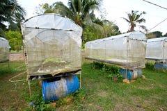 Hydroponic ферма Стоковое Изображение RF