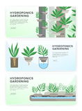 Hydroponic system, gardening technology. Collection of horizontal banners with place for text. Stock Photo