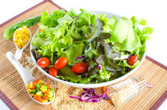 Hydroponics salad with topping Royalty Free Stock Photography
