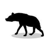 Hyena predator black silhouette animal. Vector Illustrator Stock Image