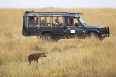 Hyena and Safari Vehicle in Africa Stock Images
