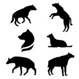 Hyena set vector. Hyena set of black silhouettes. Icons and illustrations of animals. Wild animals pattern vector illustration
