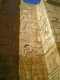 Hyeroglyph. S in the temple of ramesseum of luxor Stock Images