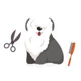 Hygien för hundhår Ansa och omsorg för vektorillustrationuppsättning älsklings- vektor illustrationer