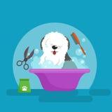 Hygien för hundhår Vektorillustrationuppsättning, ansa för husdjur och omsorg royaltyfri illustrationer