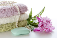 Hygien och hälsa Royaltyfri Bild