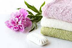 Hygiene and Health Royalty Free Stock Image